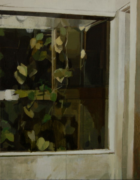 Window and Vines