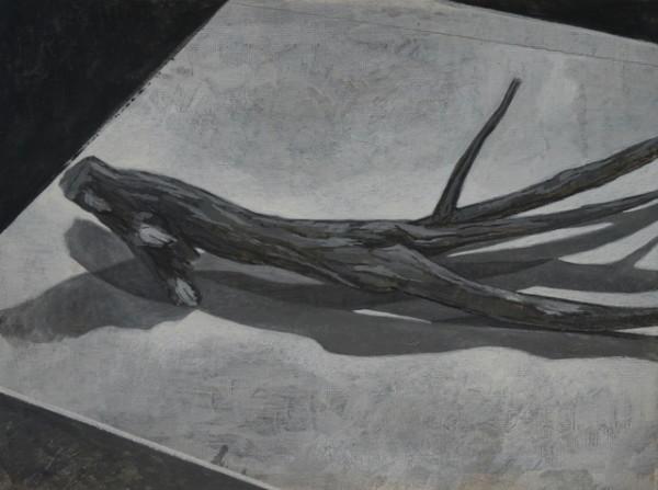 Twig Study