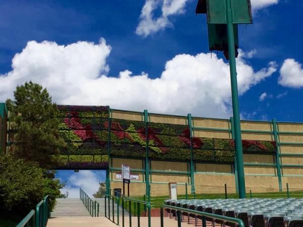 Panoramic Living Mural
