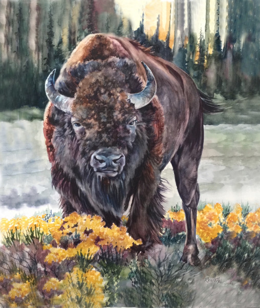 Pride of Yellowstone