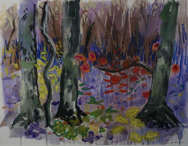 Parfrey Forest