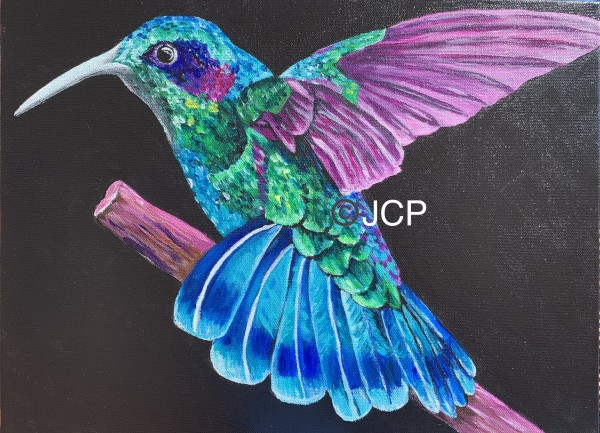 The royal reign of the hummingbird