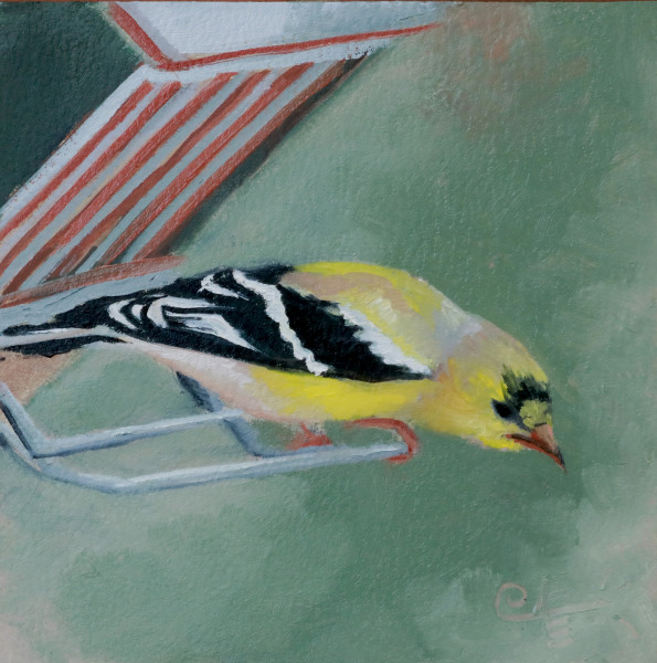 Goldfinch II
