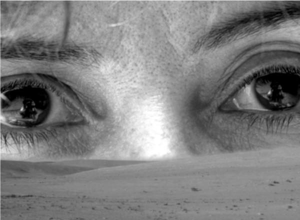 0379. Desert eye   0379. Ohar do deserto