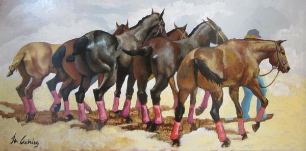 Polo Ponies, Santa Barbara