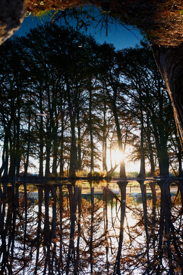 Reflective Recharge by Michael Doria, RN