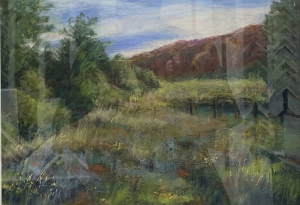 Sedona Meadow by Jackie Angier Brown