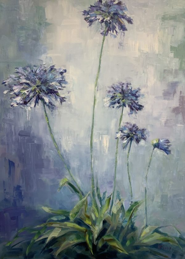 Agapanthus by Jeany Posey