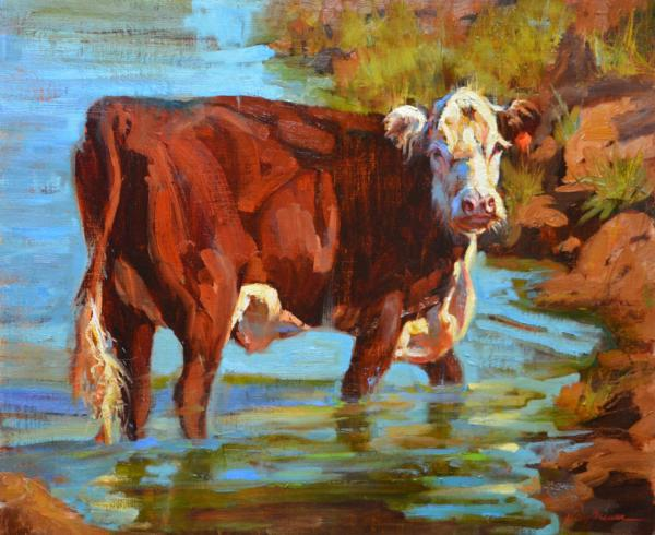 Boone Creek by Kelly Brewer