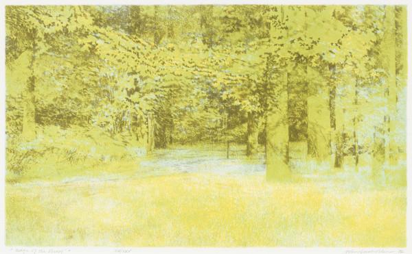 Edge of the Forest by Adrian Van Suchtelen
