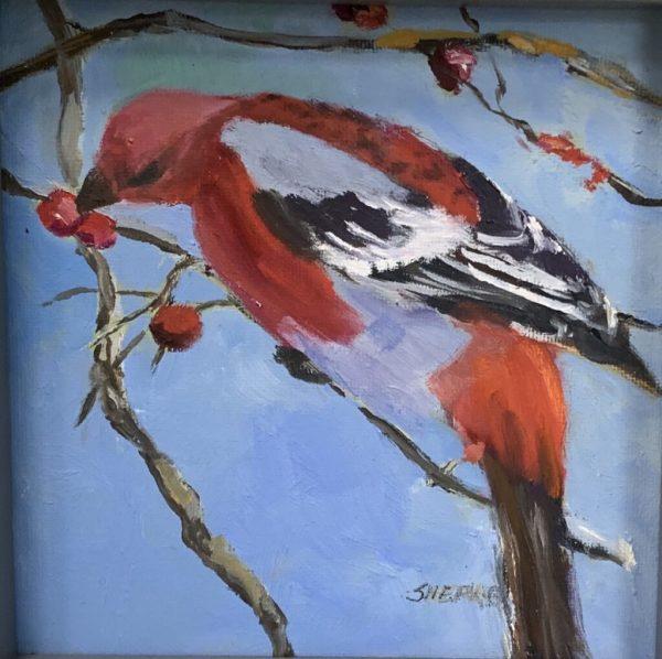 Red bird by Liz Shepherd