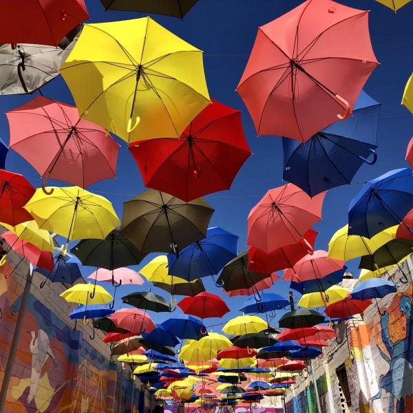 The Umbrella Alley by Lyn Patron, BSN RN RNBC
