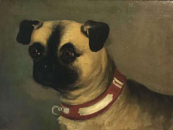 Pug by 19th Century European
