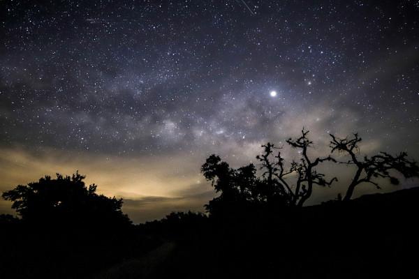 Enchanted Night by Ziad El-Zaatari, MD
