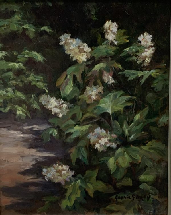 Oakleaf Hydrangea by Jeany Posey