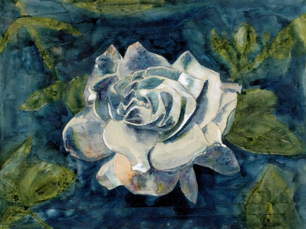 Peace Rose by Jacque Thompson
