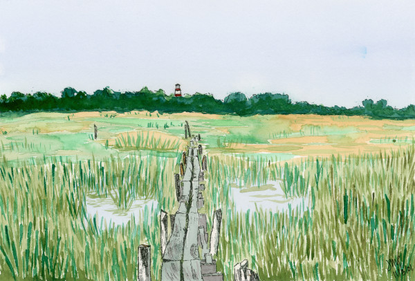 Through the Marsh by Jacque Thompson