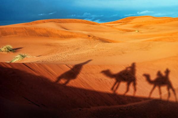Shadows Of Desert by Alexandra Jordankova