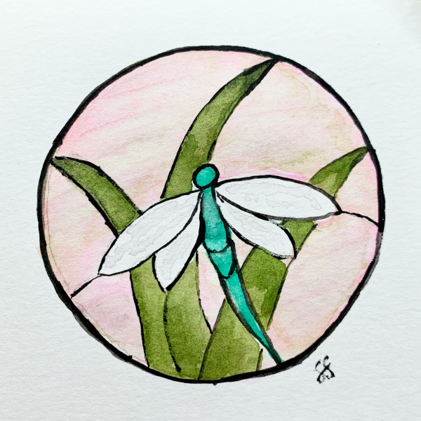 Dragonfly by Susi Schuele