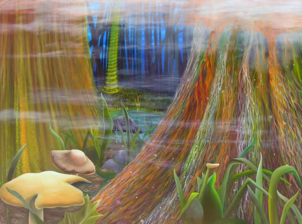 Nature Rhythms by David Heatwole