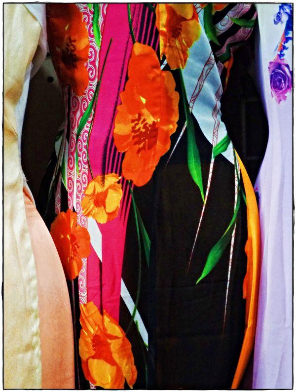 Silk Dress China Town LA 2018 by James McElroy
