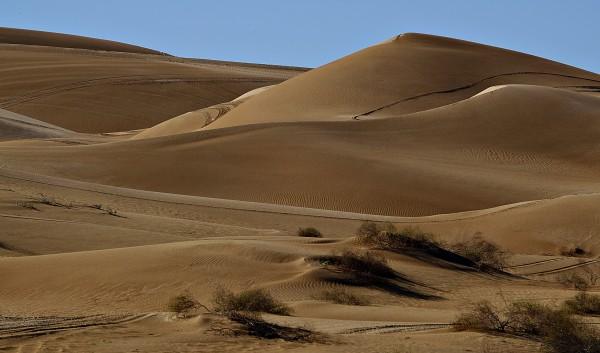 Sand Dunes, Yuma, Arizona #60 by James McElroy