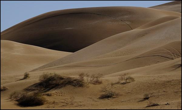 Sand Dunes, Yuma, Arizona #71 by James McElroy
