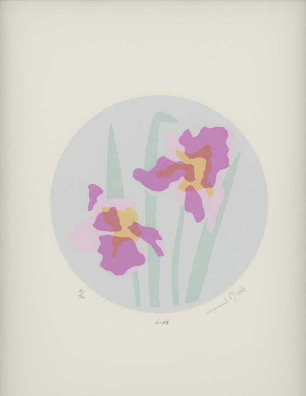 Iris by J. Gnob by Joe Borg