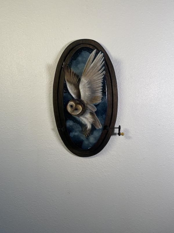 Eyes of the Night by Jamie Winn