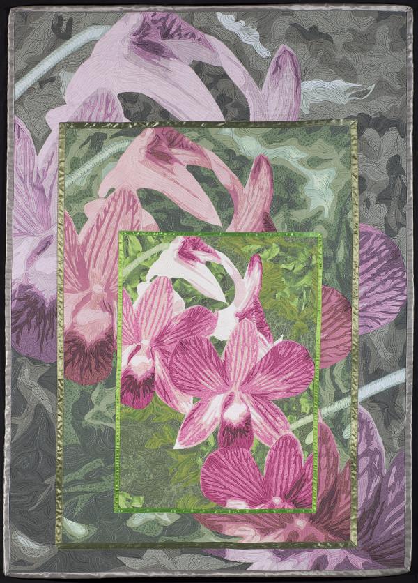 Orchids by Lea McComas