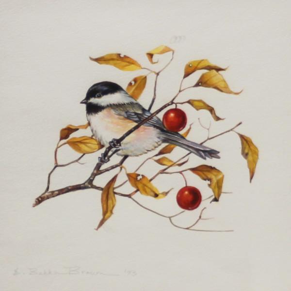 Chickadee by E. Baka Brown