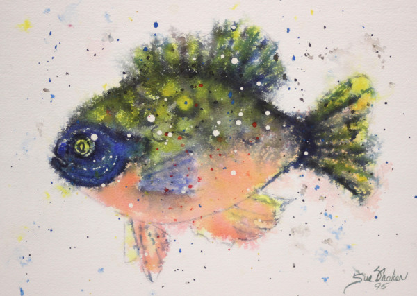 Fuzzy Fish by Sue Fraker