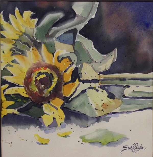 Broken Sunflower by Sue Fraker