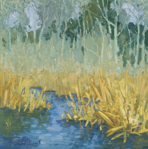 Winter Marsh by David Williams