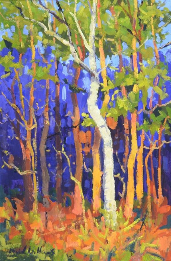 Lightning Tree ( L'arbre de Foudre ) by David Williams