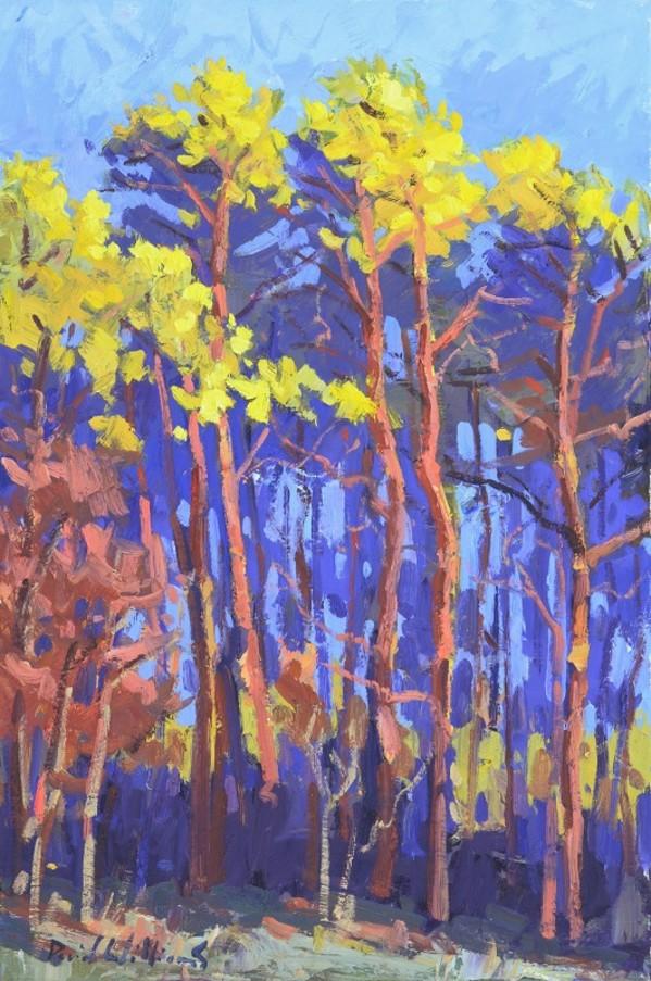 Tall Pine ( Grands Pins ) by David Williams
