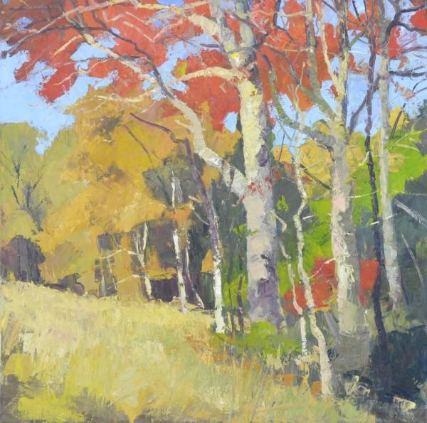 Autumn Piedmont by David Williams