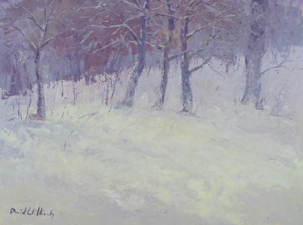 Snowfall by David Williams