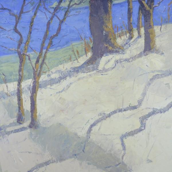 Snow Shadows by David Williams