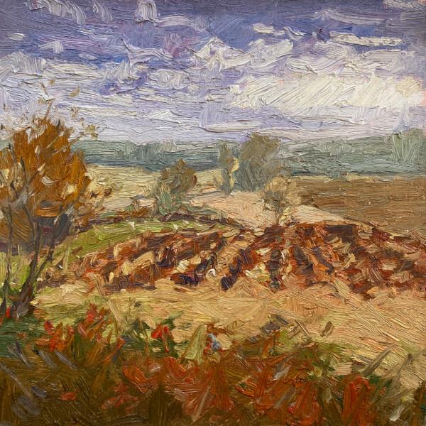 Bonne Terre by David Williams