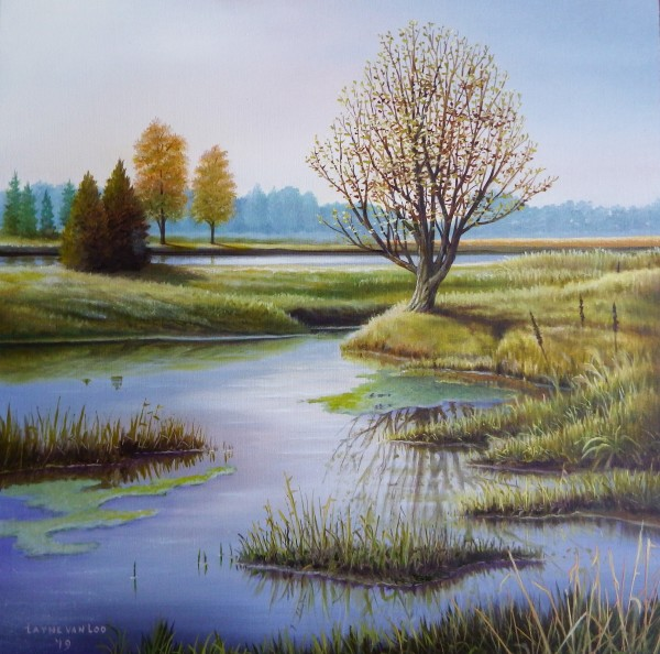 """May in the Marsh"" by Layne van Loo"