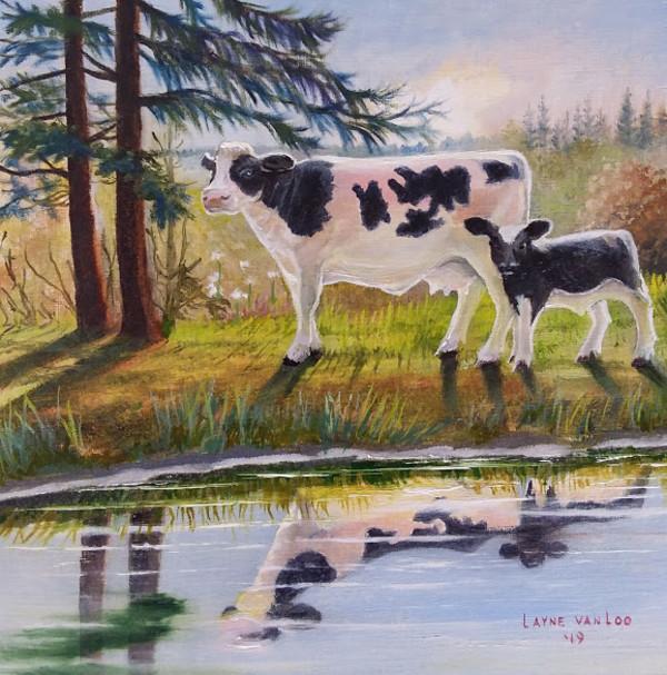 """""""Holstien Halos"""" by Layne van Loo"""