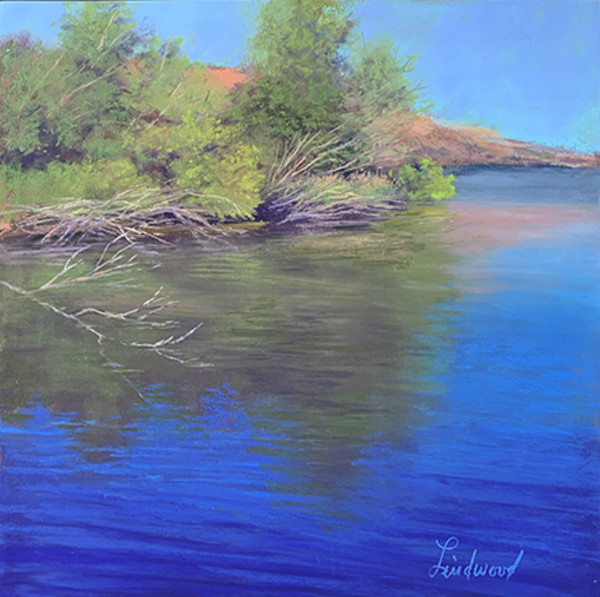 Riparian Reflections by Gretha Lindwood