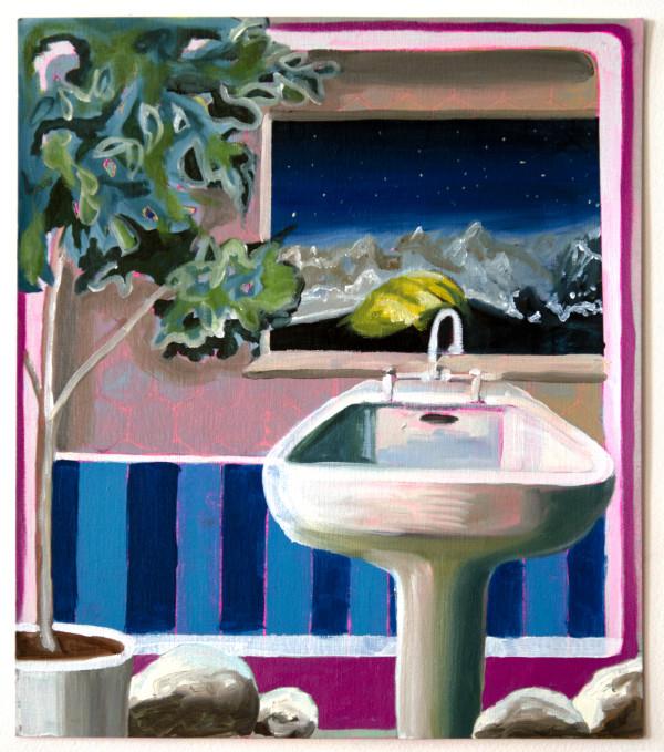 Bathroom Landscape by Mathew Tucker
