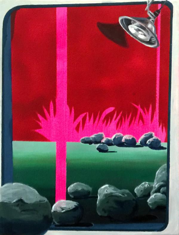 Hot Pink Palms by Mathew Tucker