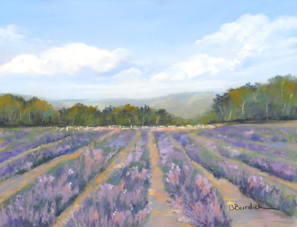 Fields of Lavender by Ginny Burdick