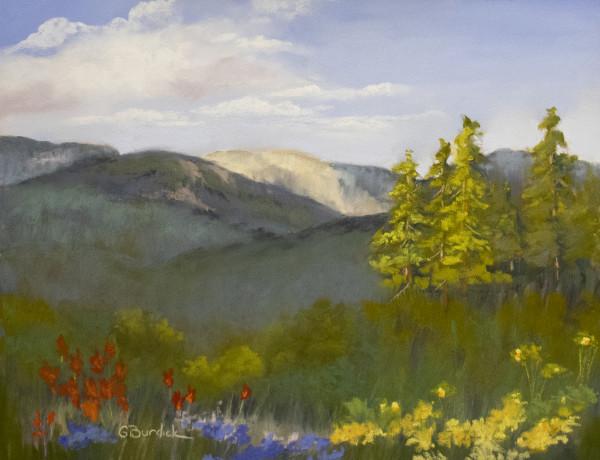 Long Sierra View by Ginny Burdick