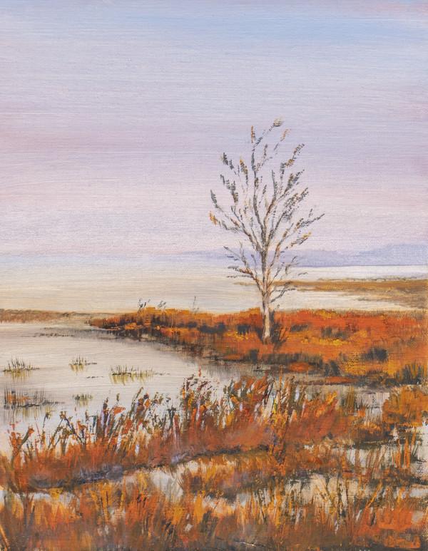 Silent Sunrise by Ginny Burdick