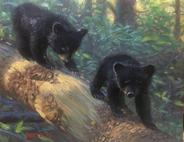 Follow the leader by Mark Keathley