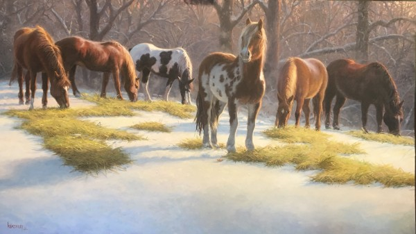 Winter watch by Mark Keathley